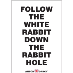 FOLLOW-THE-WHITE-RABBIT-DOWN-THE-RABBIT-HOLE-BOW.jpg